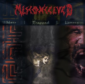 misconceived-maze-trapped-lunacy-300x297-cover-artwork