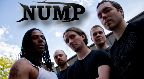 Profil-NUMP-band